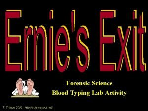 Forensic Science Blood Typing Lab Activity T Trimpe