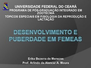 UNIVERSIDADE FEDERAL DO CEAR PROGRAMA DE PSGRADUAO INTEGRADO