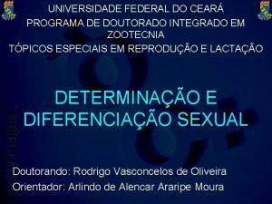 UNIVERSIDADE FEDERAL DO CEAR PROGRAMA DE DOUTORADO INTEGRADO