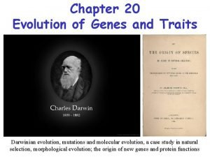 Chapter 20 Evolution of Genes and Traits Darwinian