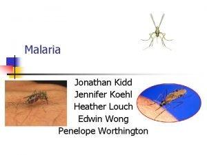 Malaria Jonathan Kidd Jennifer Koehl Heather Louch Edwin