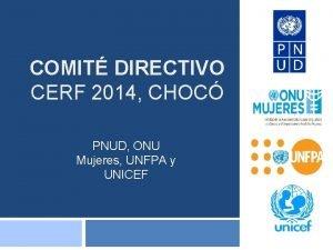 COMIT DIRECTIVO CERF 2014 CHOC PNUD ONU Mujeres