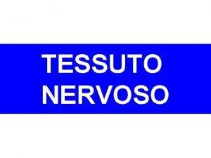 TESSUTO NERVOSO TESSUTO NERVOSO Fa parte del SISTEMA