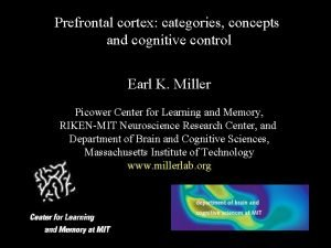 Prefrontal cortex categories concepts and cognitive control Earl