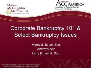 Corporate Bankruptcy 101 Select Bankruptcy Issues Morris S