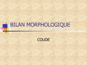 BILAN MORPHOLOGIQUE COUDE 1 Situation n n Comme