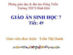 Phng gio dc o to ng Triu Trng
