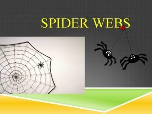 SPIDER WEBS SPIDER WEBS You know there are