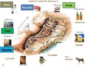 Vieja Valle Muladar Pescado Oveja Mensaje 080516 PIEBE