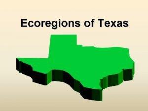 Ecoregions of Texas What Is An Ecoregion Ecoregion