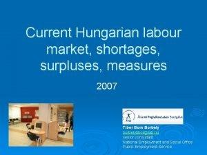 Current Hungarian labour market shortages surpluses measures 2007
