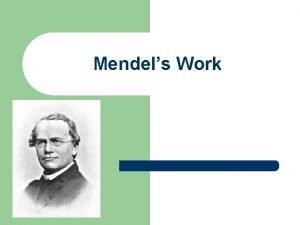 Mendels Work Gregor Mendel l l Gregor Mendel