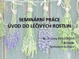 SEMINRN PRCE VOD DO LIVCH ROSTLIN Bc Kristna