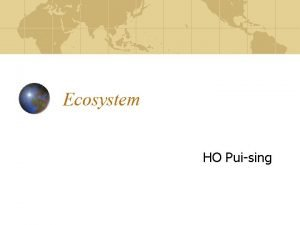 Ecosystem HO Puising Contents What is an ecosystem