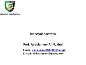 Nervous System Prof Abdulameer AlNuaimi Email a alnuaimisheffield