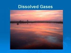 Dissolved Gases Important Gases 6 important gases are