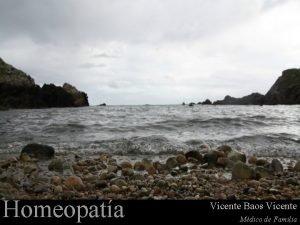 Homeopata Vicente Baos Vicente Mdico de Familia Del