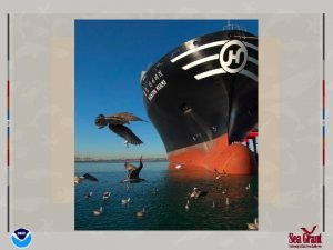 Marine Fuels Cold Ironing Saving Fuel and the