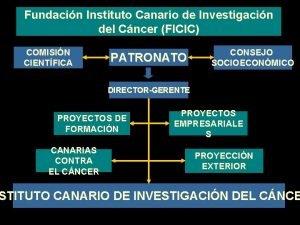 Fundacin Instituto Canario de Investigacin del Cncer FICIC