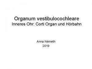 Organum vestibulocochleare Inneres Ohr Corti Organ und Hrbahn