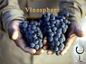 CATLOGO VINOSPHERE Hola somos la cooperativa Vinosphere dedicada