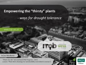 Empowering the thirsty plants ways for drought tolerance