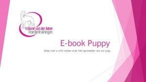 Ebook Puppy Alles wat u wilt weten over