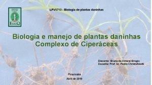 LPV 5713 Biologia de plantas daninhas Biologia e