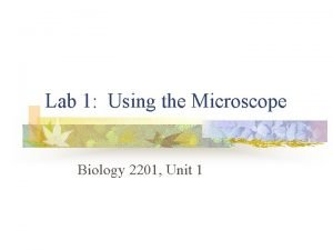 Lab 1 Using the Microscope Biology 2201 Unit