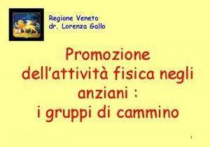 Regione Veneto dr Lorenza Gallo Promozione dellattivit fisica