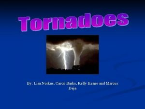 By Lisa Norkus Caron Barks Kelly Keane and