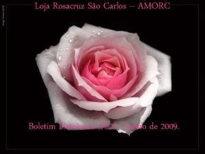 Loja Rosacruz So Carlos AMORC Boletim Eletrnico n