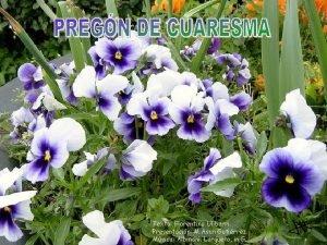Texto Florentino Ulibarri Presentacin M Asun Gutirrez Msica