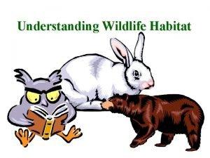 Understanding Wildlife Habitat What is Wildlife Habitat The