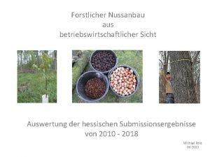 Forstlicher Nussanbau aus betriebswirtschaftlicher Sicht Auswertung der hessischen