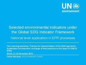 Selected environmental indicators under the Global SDG Indicator