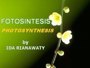 FOTOSINTESIS PHOTOSYNTHESIS by IDA RIANAWATY Copyright2009 by Ida