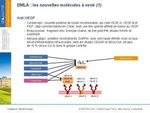 DMLA les nouvelles molcules venir 1 AntiVEGF Conbercept
