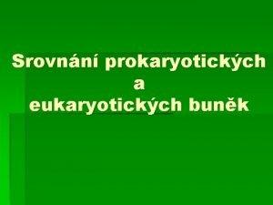 Srovnn prokaryotickch a eukaryotickch bunk Prokaryotick buky Z