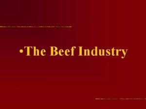 The Beef Industry The Beef Industry The average