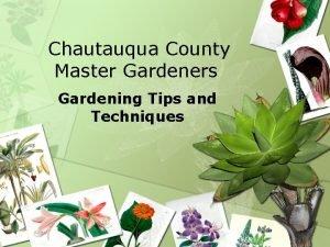 Chautauqua County Master Gardeners Gardening Tips and Techniques