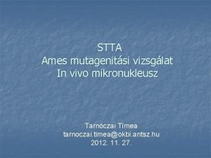 STTA Ames mutagenitsi vizsglat In vivo mikronukleusz Tarnczai