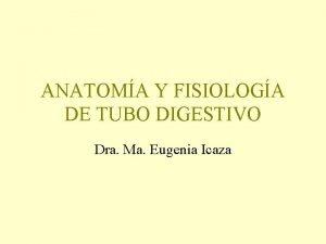 ANATOMA Y FISIOLOGA DE TUBO DIGESTIVO Dra Ma