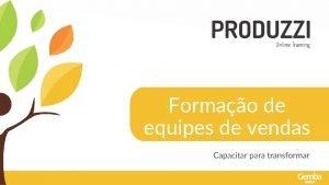 Formao de equipes de vendas FORMAO DE EQUIPES