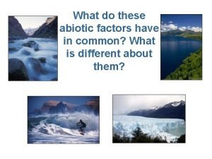 What do these abiotic factors have in common