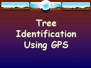 Tree Identification Using GPS GPS Global Positioning System