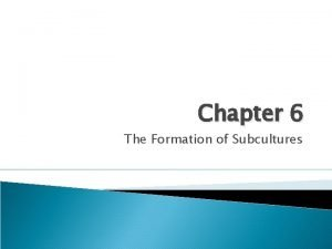 Chapter 6 The Formation of Subcultures A subdivision