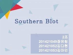 Southern Blot 2 201421049 201421052 201421053 Southern hybridization