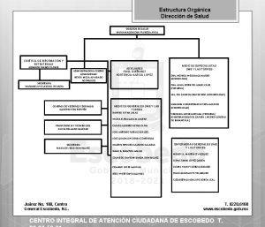 Estructura Orgnica Direccin de Salud DIRECTOR DE SALUD