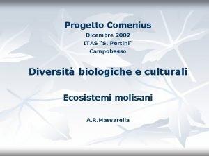 Progetto Comenius Dicembre 2002 ITAS S Pertini Campobasso